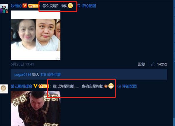 特意将孙越与郑敏的照片放在了一起