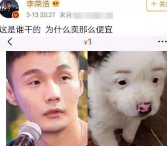 """李荣浩也是第一时间回复:""""你到底从哪找那么多狗""""。"""